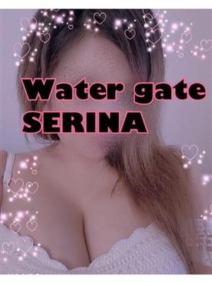 体験入店セリナちゃん | Water Gate-ウォーターゲート
