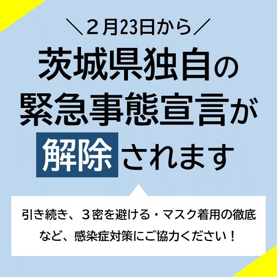 「」02/24(水) 16:43   椎名なおの写メ日記