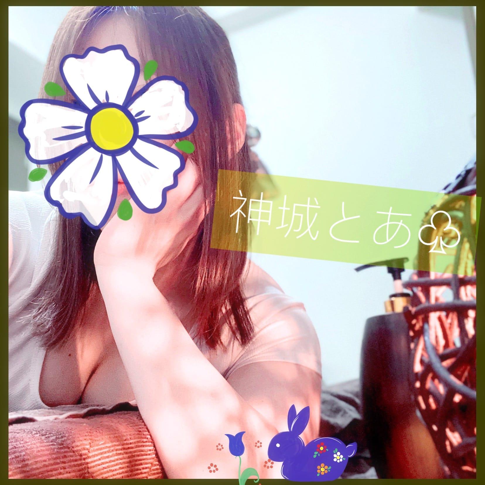 「伊良湖岬の菜の花見てきたよ♫」03/07(日) 15:54 | 神城とあの写メ日記