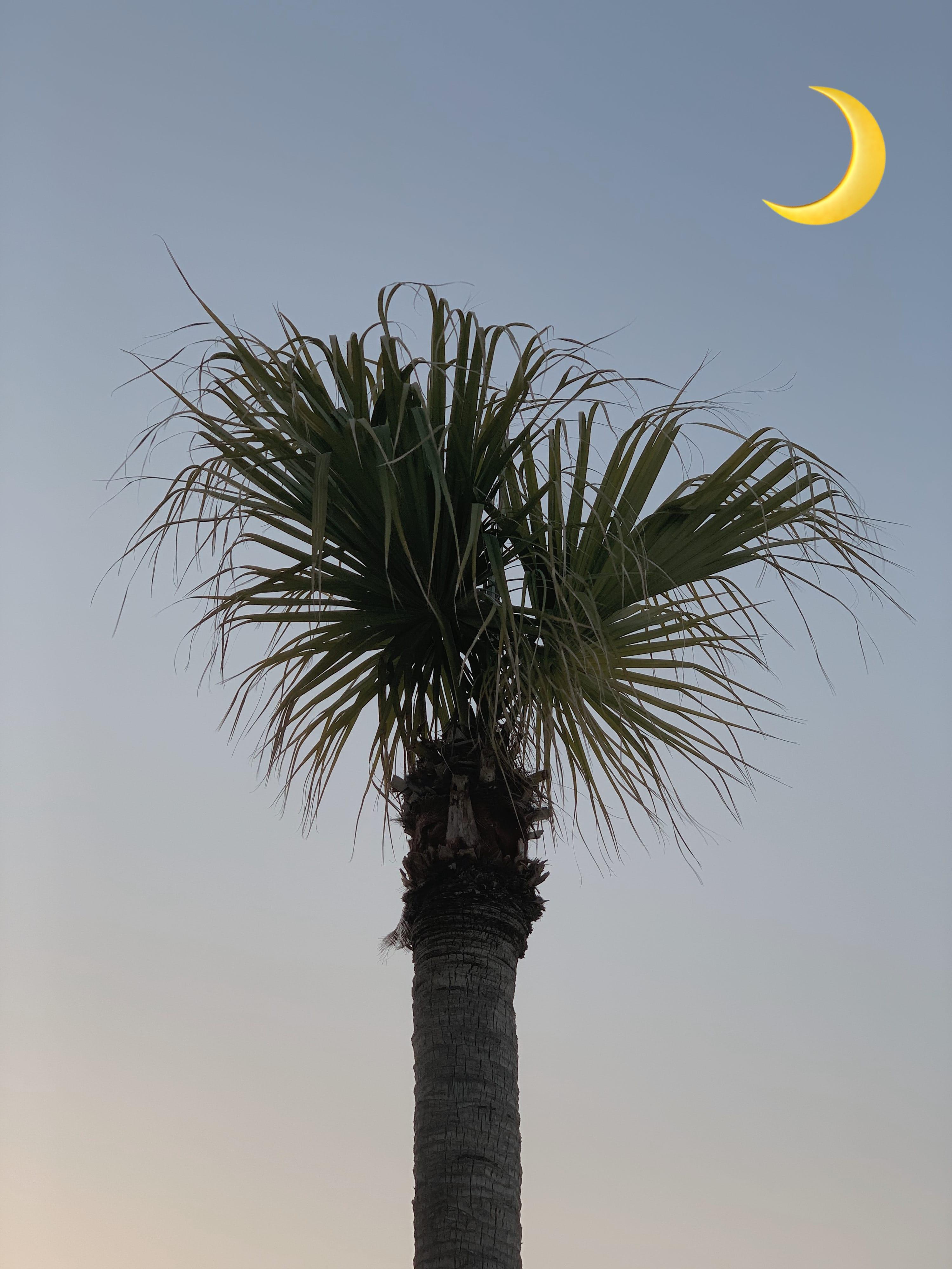 「こんばんは」10/24(日) 21:41   こころ(ご予約殺到中)の写メ日記