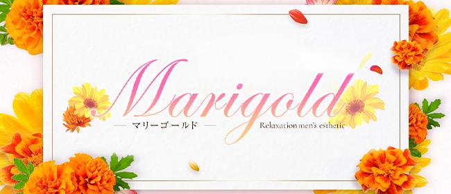 Marigold~マリーゴールド