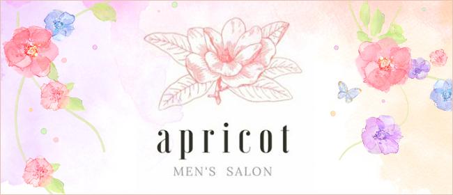 apricot~アプリコット