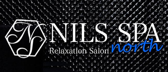 NILS SPA north(ニルススパ ノース)西中島ルーム