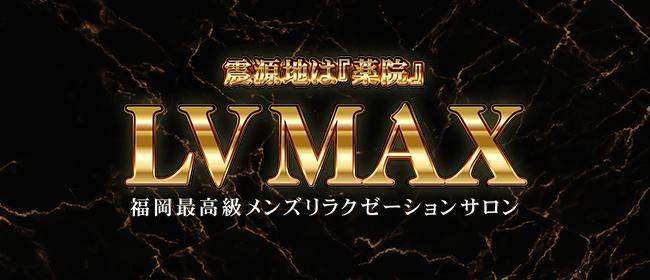 LV MAX(レベルマックス)